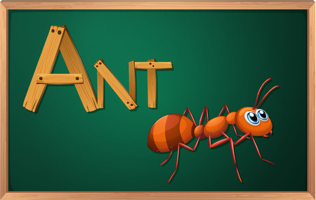 Illustration of a blackboard with an ant Vector