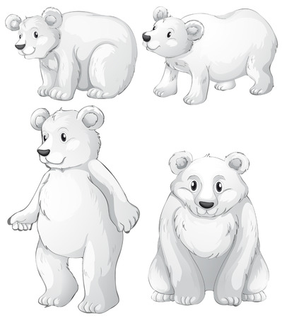 Illustration of the four white polar bears on a white background Illustration