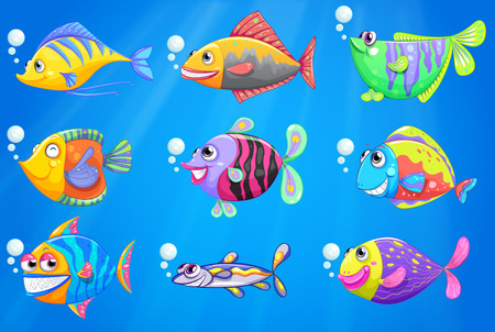seafoods: Illustration of a sea with a school of colourful fishes