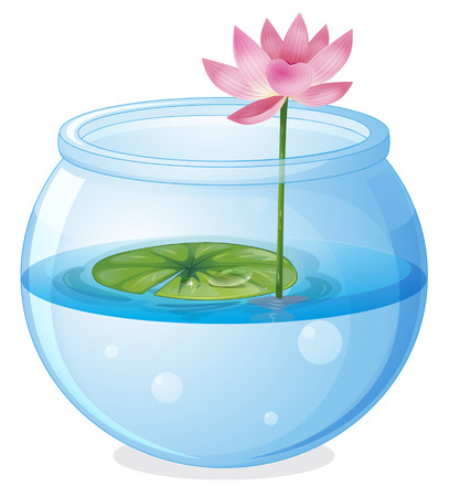 lilypad: Illustration of an aquarium with a waterlily and a flower on a white background