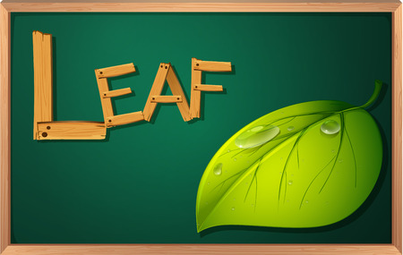 Illustration of a blackboard with a leaf Vector