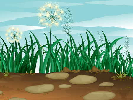 cultivated land: Illustration of the green grass under the clear blue sky