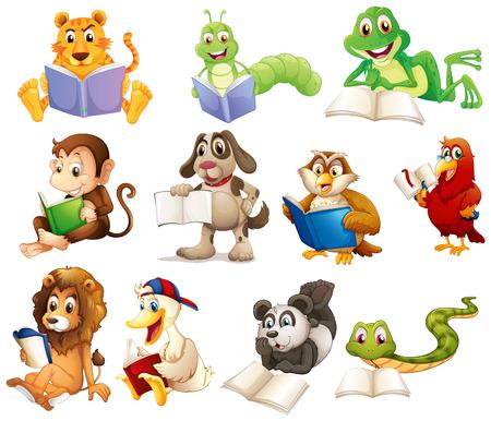 tiere: Illustration einer Gruppe von Tieren zu lesen auf einem weißen Hintergrund