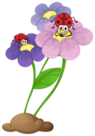 Illustration of the flowers with ladybugs on a white background Vector