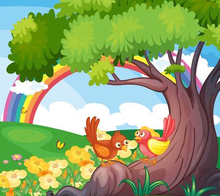 arcoiris caricatura: Ilustraci�n de las aves bajo el �rbol con un arco iris en el cielo
