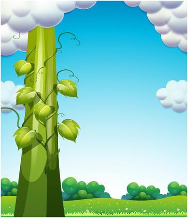 Illustration of the giant bean