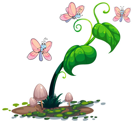 vine leaves: Illustration of a green plant with butterflies on a white background