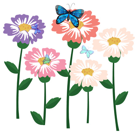 fresh flowers: Illustration of the fresh flowers with butterflies on a white background Illustration