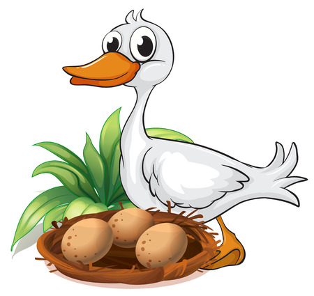Illustration of a duck beside her nest on a white background