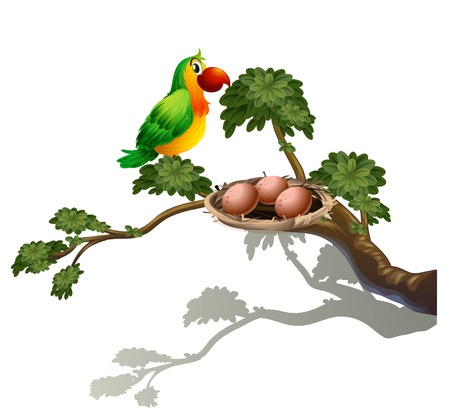 Illustration of a parrot and a nest on a white background Vector