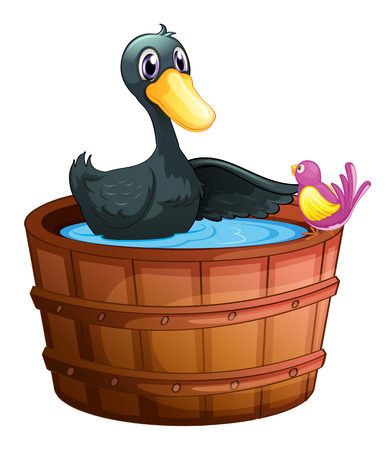 bucket of water: Illustration of a bird watching the duck above the pail on a white background