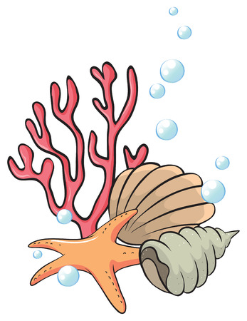bubbling: Illustration of the shells and starfish under the sea on a white background Illustration