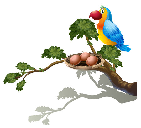 Illustration of a big branch of a tree with a nest and a bird on a white background Vector