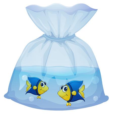 plastico pet: Ilustración de una bolsa de plástico con dos peces en un fondo blanco