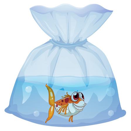 plastico pet: Ilustración de un pez dentro del plástico sobre un fondo blanco