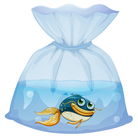 pouch: Illustration of a fish inside a plastic pouch on a white background Illustration