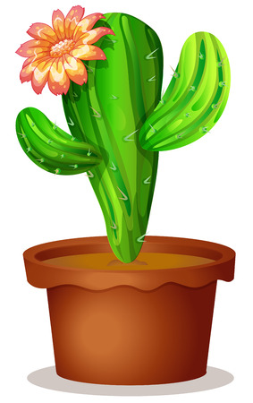 spines: Illustration of a cactus plant with a flower on a white background