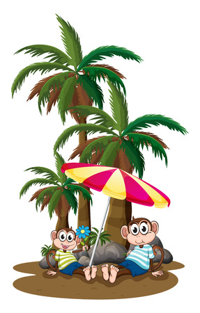Illustration of the monkeys under the coconut trees on a white background Vector