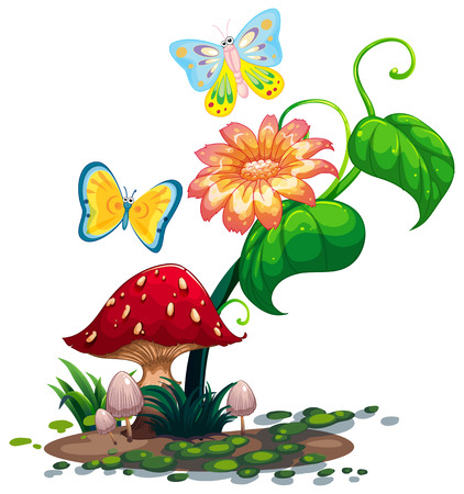 cartoon insect: Illustration of a big flower near the mushroom with two butterflies on a white background