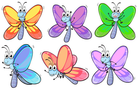 segmented bodies: Illustration of a group of colourful butterflies on a white background