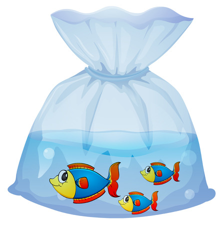 Illustration of a plastic pouch with three fishes on a white background Stock Vector - 29111448
