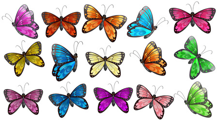 Illustration of the colourful butterflies on a white background Ilustração