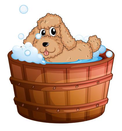 regimen: Illustration of a dog taking a bath on a white background Illustration