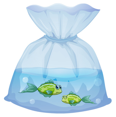 pouch: Illustration of the green fishes inside the plastic pouch on a white background Illustration