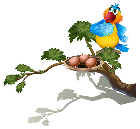 Illustration of a parrot watching the eggs in the nest on a white background Vector