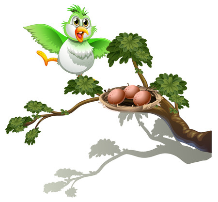 guarding: Illustration of a cute bird at the branch of a tree with a nest on a white background