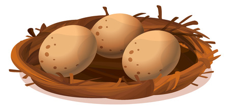 Illustration of a nest with three eggs on a white background Vector