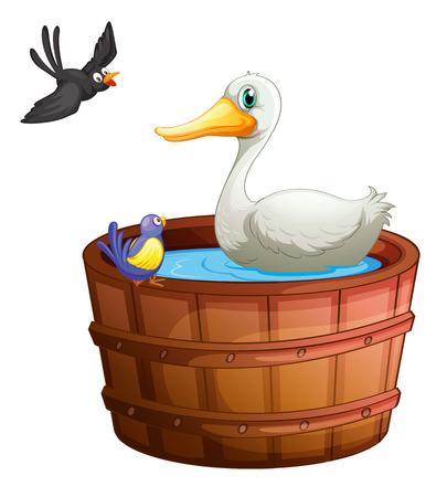 regimen: Illustration of a bathtub with birds on a white background Illustration