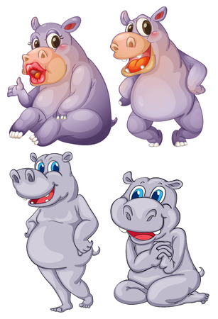 Illustration of the four hippopotamus on a white background Vector
