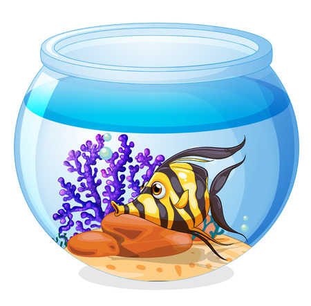 Illustration of a fish inside the jar on a white background Vector
