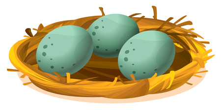 Illustration of a nest with three eggs on a white background Illustration