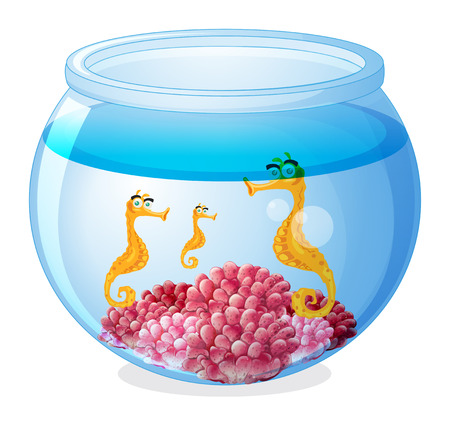 Illustration of a jar with three seahorses on a white background Vector