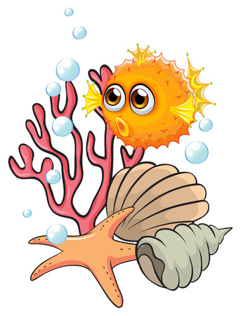 puffer: Illustration of an orange puffer fish near the seashells on a white background Illustration