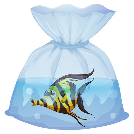 Illustration of a fish inside the plastic container on a white background Stock Vector - 29113670