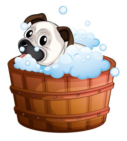 regimen: Illustration of a cute bulldog inside the bathtub on a white background