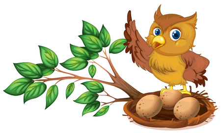 animal nest: Illustration of an owl watching the eggs on a white background