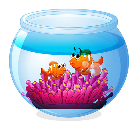 breakable: Illustration of an aquarium with two orange fishes on a white background Illustration