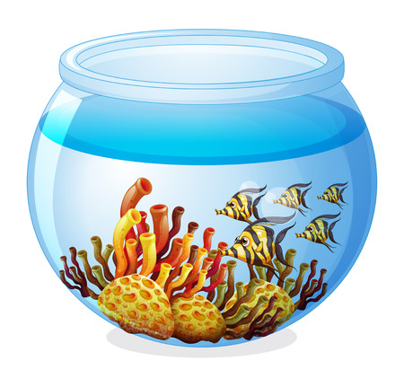 Illustration of an aquarium with fishes on a white background Vector