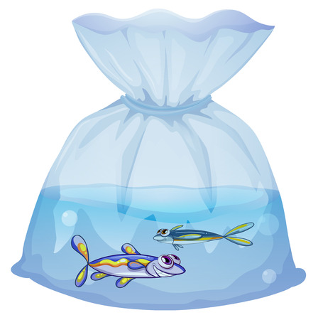 pouch: Illustration of a plastic pouch with two fishes on a white background