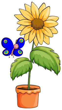 Illustration of a butterfly near the pot with a flowering plant on a white background