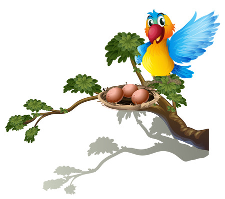 nest egg: Illustration of a bird watching the nest on a white background