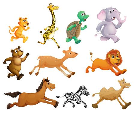 Illustration of many animals running