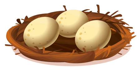 laying egg: Illustration of a nest with three eggs on a white background Illustration