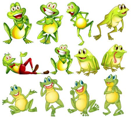 rana caricatura: Ilustración de las diferentes posiciones de las ranas