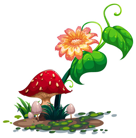 giant mushroom: Illustration of a flowering plant and mushrooms on a white background Illustration