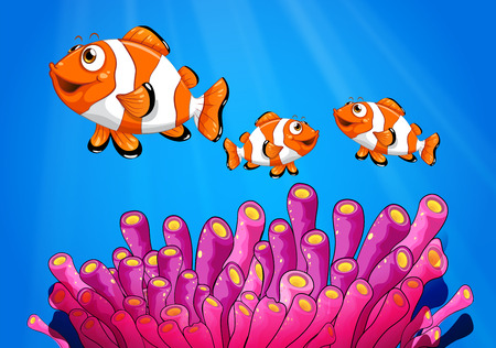 clownfish: Illustration of the clownfishes under the sea Illustration